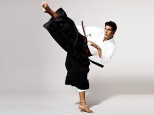 martial art story